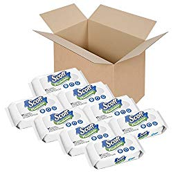 Expert Comparison On Flushable Adult Wet Wipes That Will