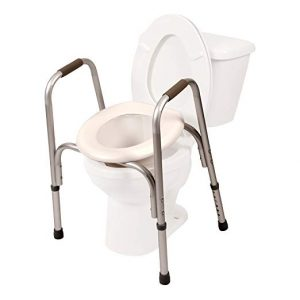 best toilet riser with arms